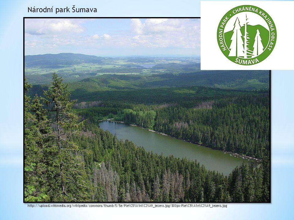 Národní park Šumava http://upload.wikimedia.org/wikipedia/commons/thumb/5/5e/Ple%C5%A1n%C3%A9_jezero.jpg/800px-Ple%C5%A1n%C3%A9_jezero.jpg.