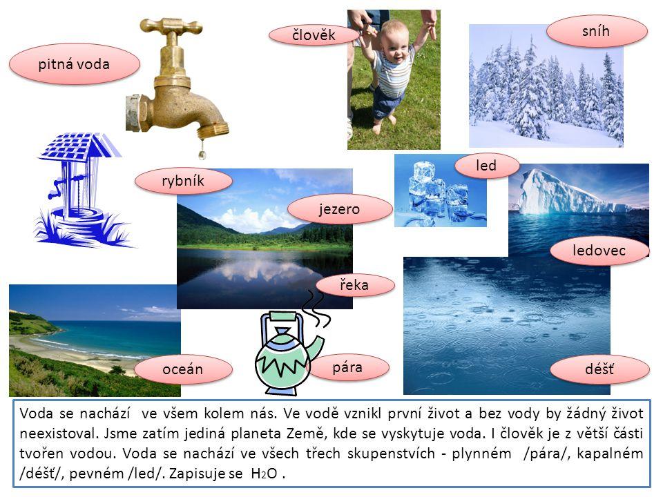 sníh člověk. pitná voda. led. rybník. jezero. ledovec. řeka. oceán. pára. déšť.