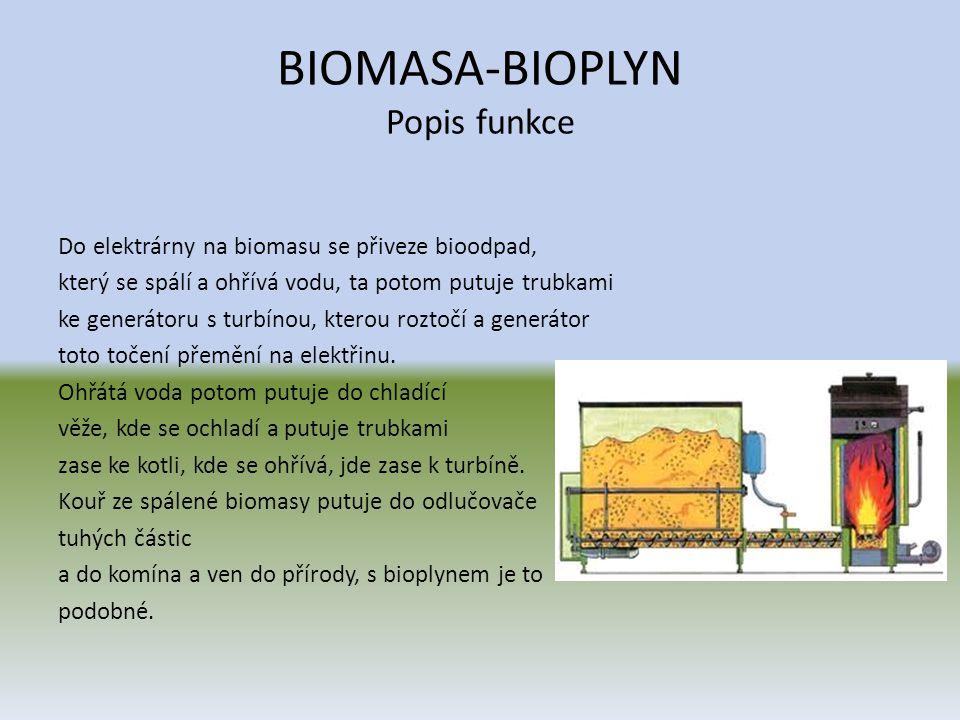 BIOMASA-BIOPLYN Popis funkce