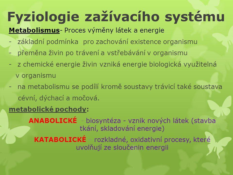 Fyziologie zažívacího systému