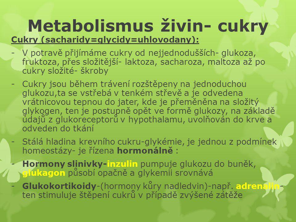 Metabolismus živin- cukry