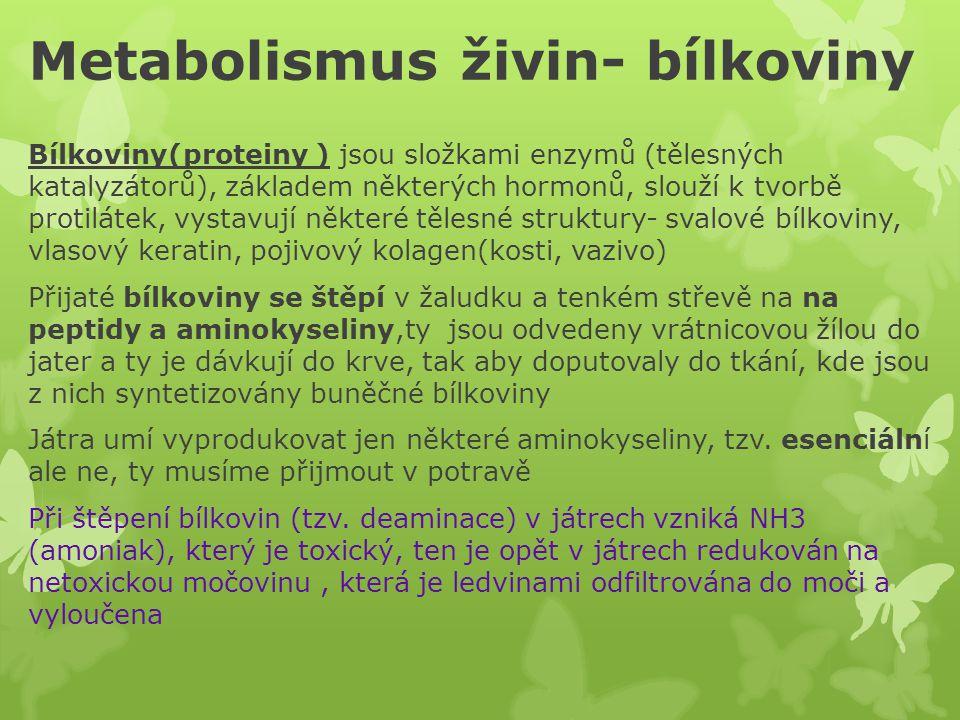 Metabolismus živin- bílkoviny