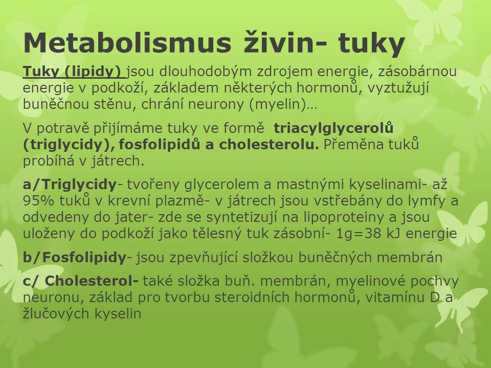 Metabolismus živin- tuky