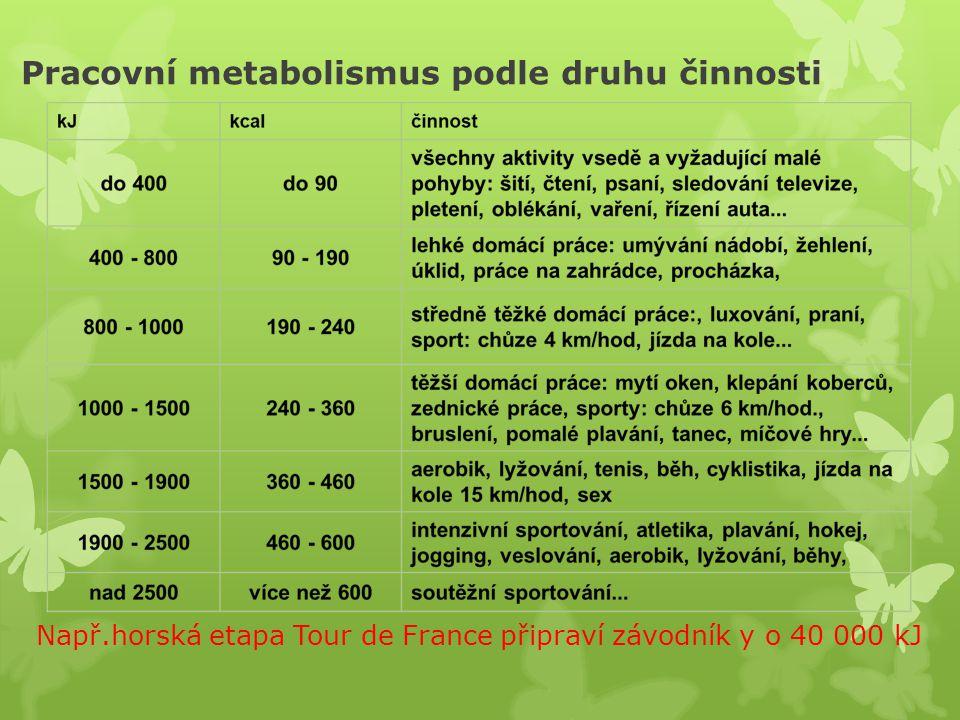 Pracovní metabolismus podle druhu činnosti