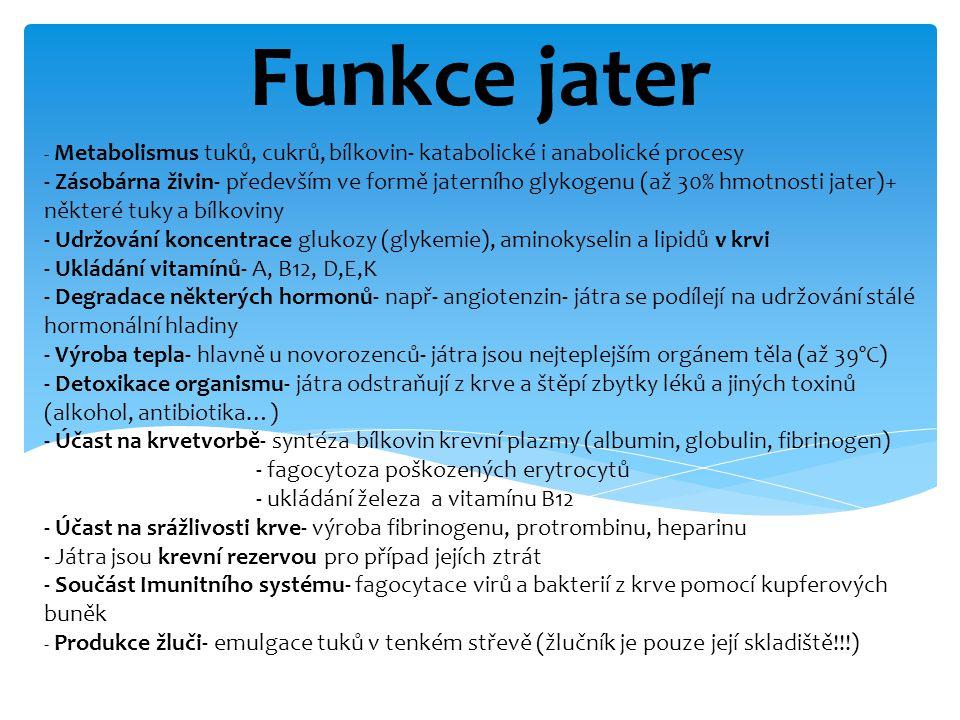 Funkce jater