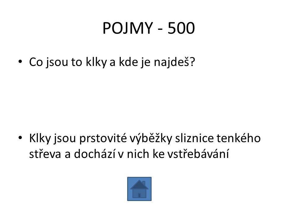 POJMY - 500 Co jsou to klky a kde je najdeš