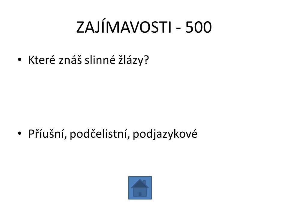 ZAJÍMAVOSTI - 500 Které znáš slinné žlázy