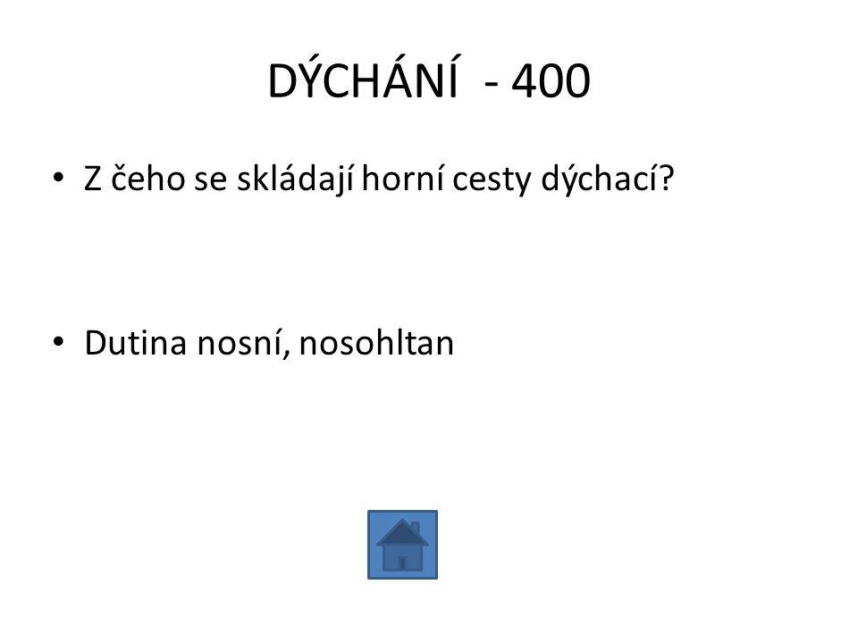 DÝCHÁNÍ - 400 Z čeho se skládají horní cesty dýchací