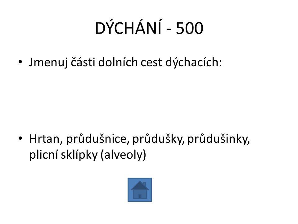 DÝCHÁNÍ - 500 Jmenuj části dolních cest dýchacích:
