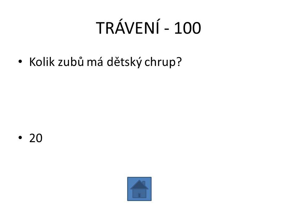 TRÁVENÍ - 100 Kolik zubů má dětský chrup 20