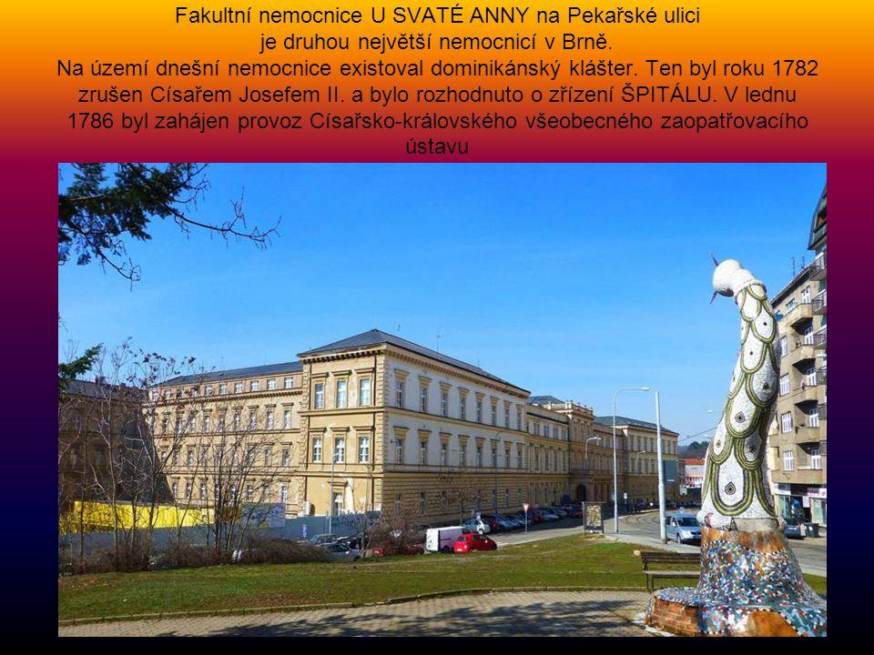 Fakultní nemocnice U SVATÉ ANNY na Pekařské ulici je druhou největší nemocnicí v Brně.