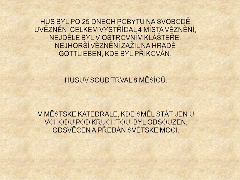 HUSŮV SOUD TRVAL 8 MĚSÍCŮ.
