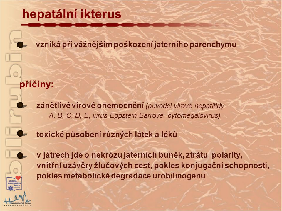 hepatální ikterus příčiny:
