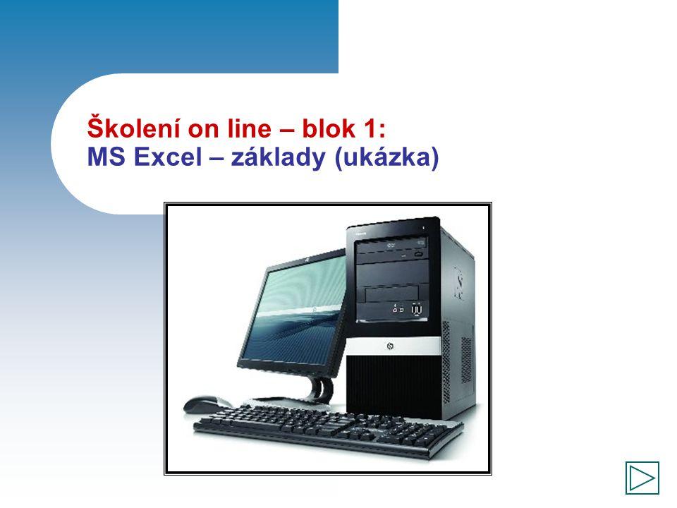 Školení on line – blok 1: MS Excel – základy (ukázka)
