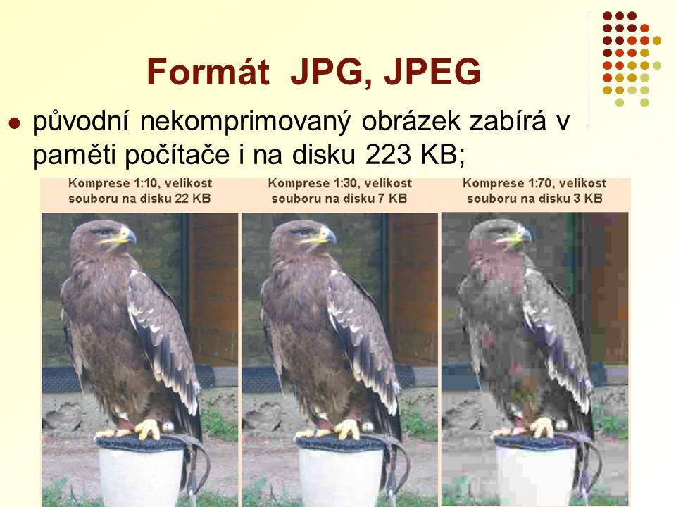 Formát JPG, JPEG původní nekomprimovaný obrázek zabírá v paměti počítače i na disku 223 KB;