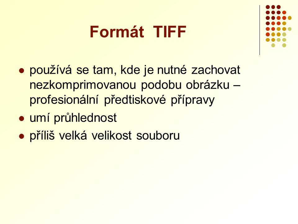 Formát TIFF používá se tam, kde je nutné zachovat nezkomprimovanou podobu obrázku – profesionální předtiskové přípravy.