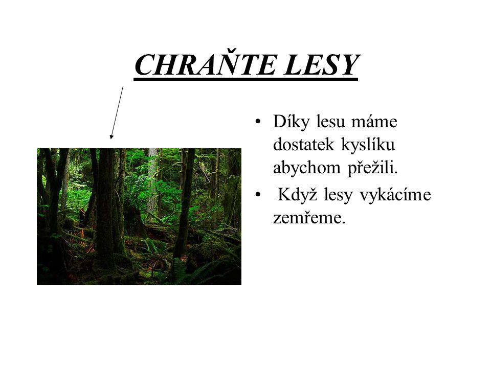 CHRAŇTE LESY Díky lesu máme dostatek kyslíku abychom přežili.