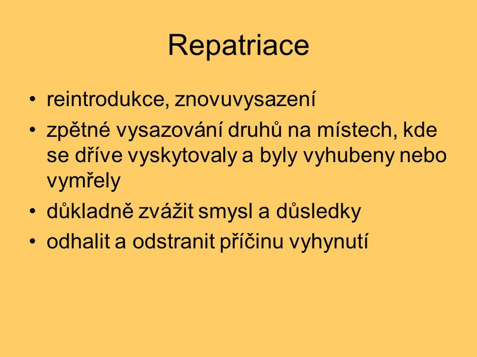 Repatriace reintrodukce, znovuvysazení