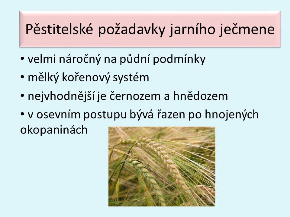 Pěstitelské požadavky jarního ječmene