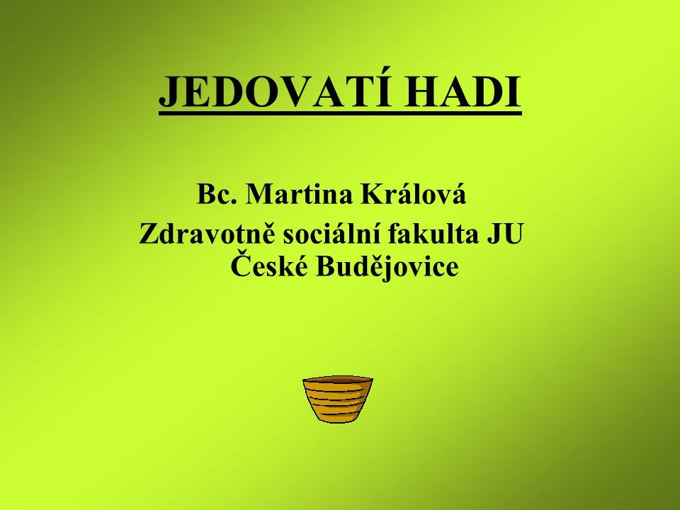 Zdravotně sociální fakulta JU České Budějovice
