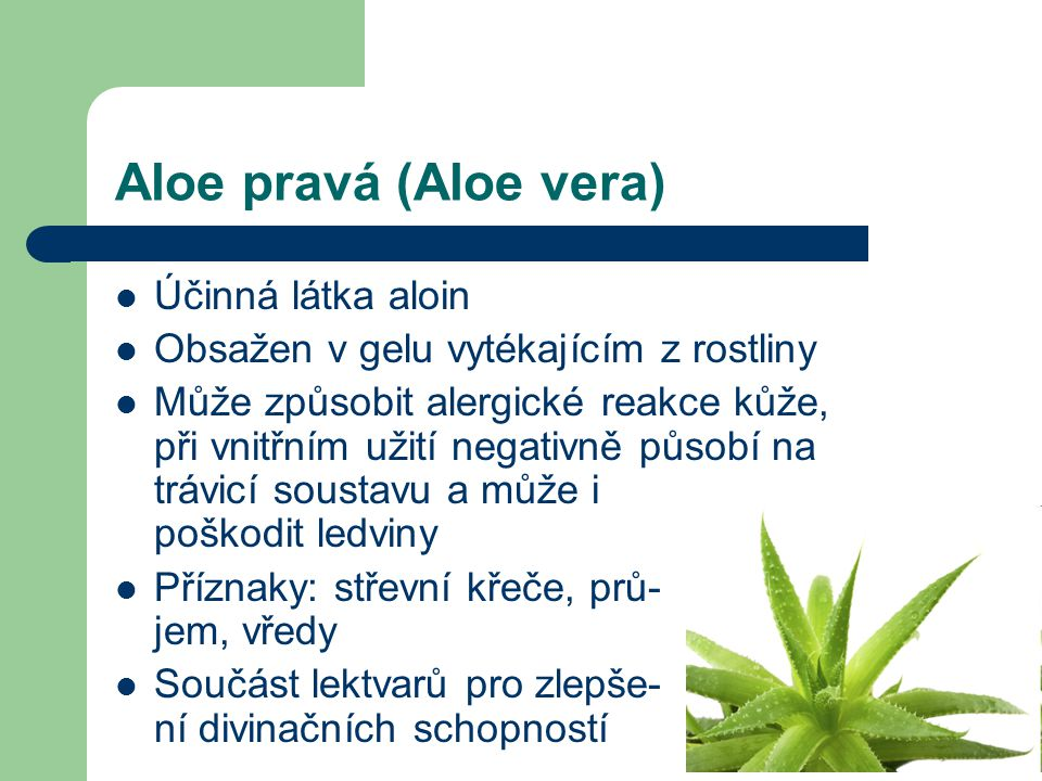 Aloe pravá (Aloe vera) Účinná látka aloin