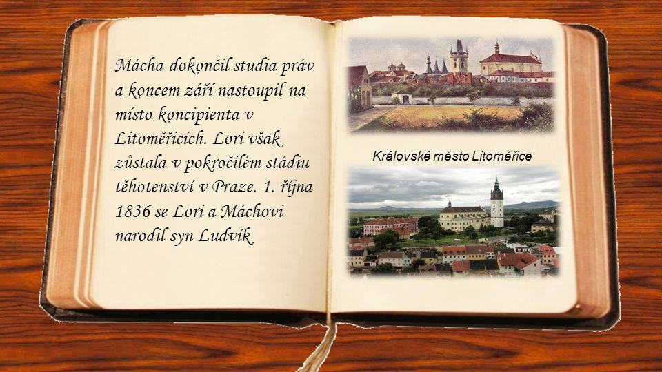 Královské město Litoměřice