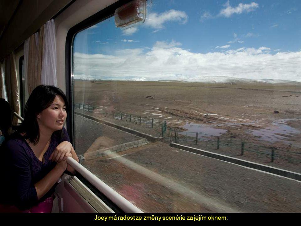 Joey má radost ze změny scenérie za jejím oknem.
