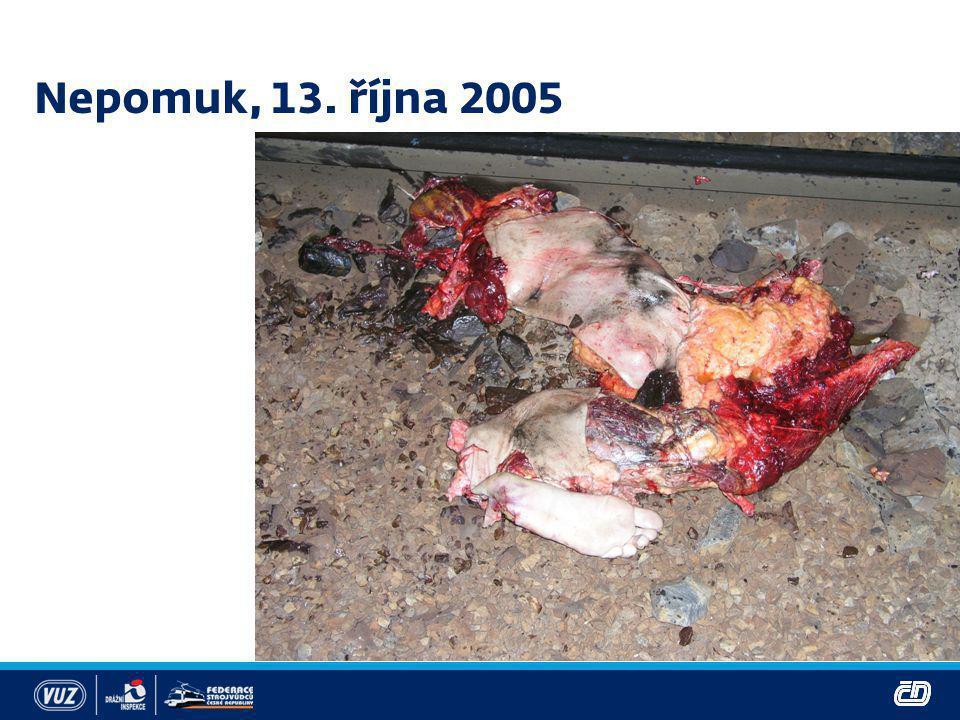 Nepomuk, 13. října 2005