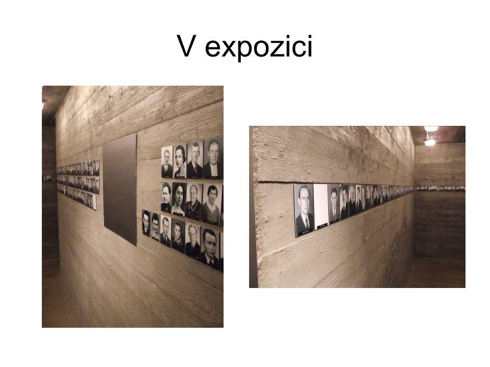 V expozici