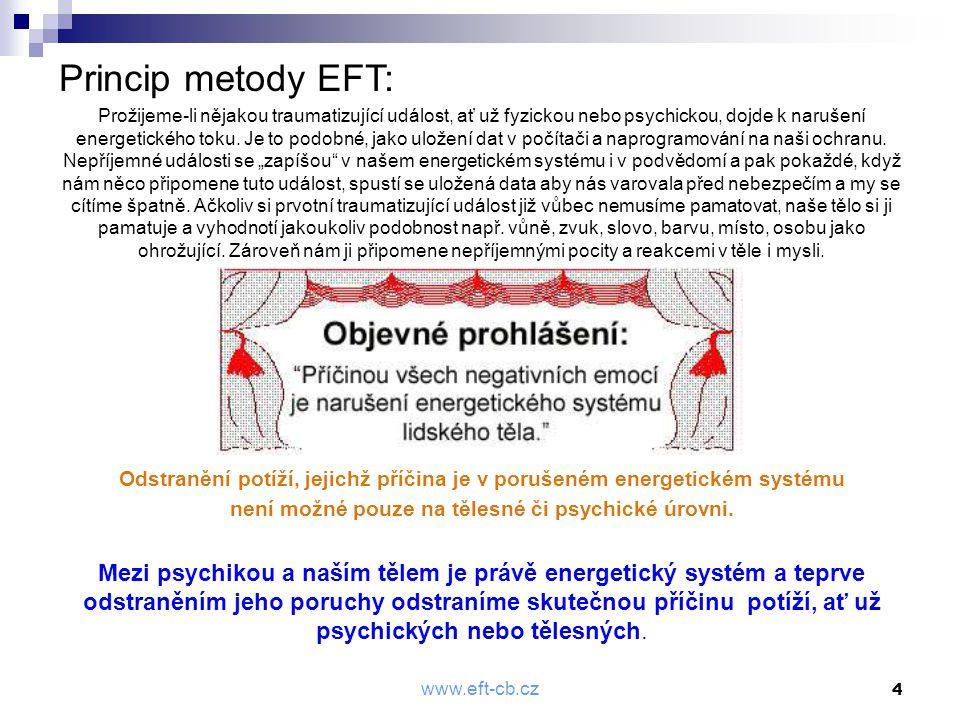 Princip metody EFT: