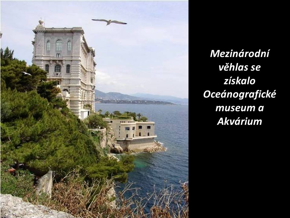 Mezinárodní věhlas se získalo Oceánografické museum a Akvárium