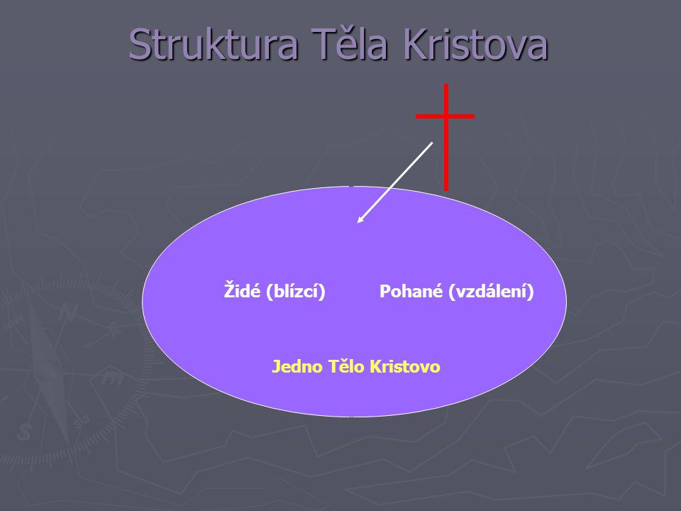 Struktura Těla Kristova