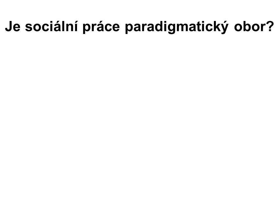 Je sociální práce paradigmatický obor