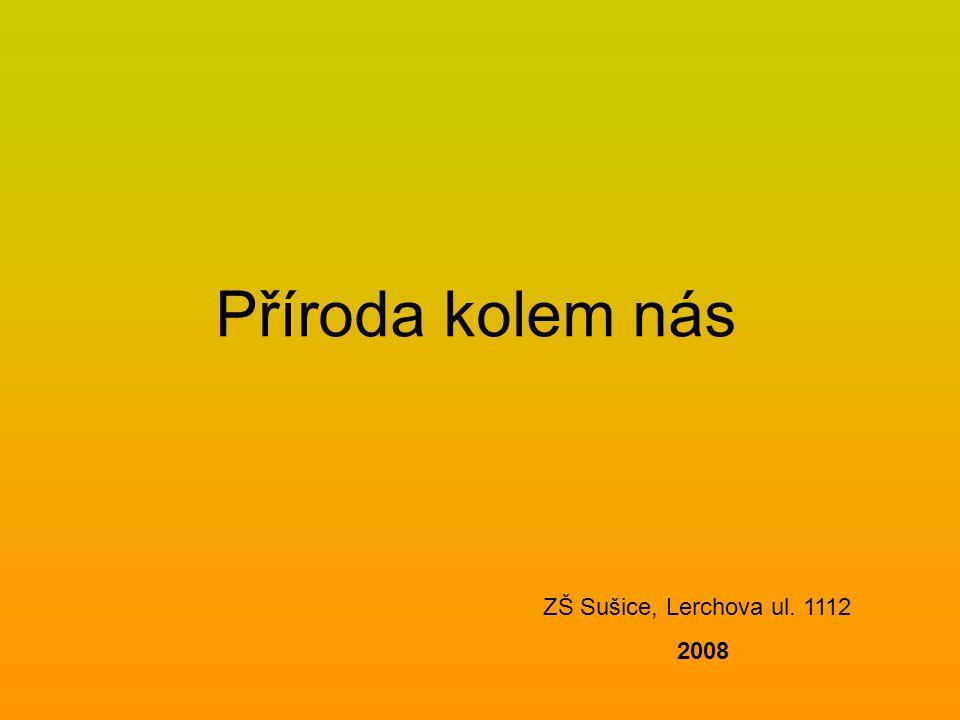 Příroda kolem nás ZŠ Sušice, Lerchova ul. 1112 2008