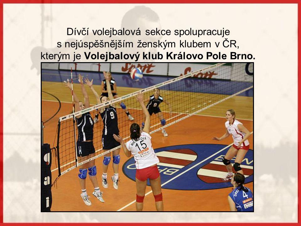 Dívčí volejbalová sekce spolupracuje
