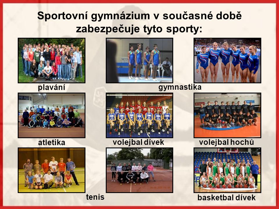 Sportovní gymnázium v současné době zabezpečuje tyto sporty: