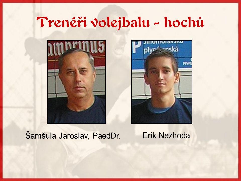 Trenéři volejbalu - hochů