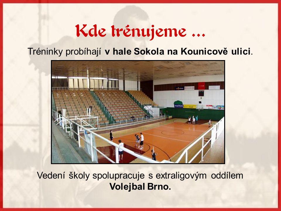 Kde trénujeme ... Tréninky probíhají v hale Sokola na Kounicově ulici.