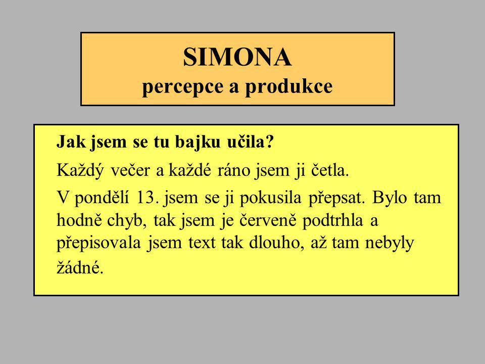 SIMONA percepce a produkce