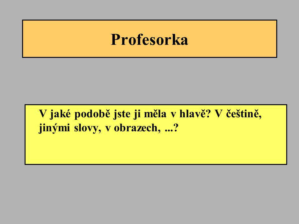 Profesorka V jaké podobě jste ji měla v hlavě V češtině, jinými slovy, v obrazech, ...