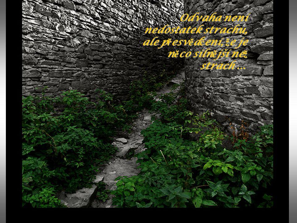 Odvaha není nedostatek strachu, ale přesvědčení, že je něco silnější než strach ...