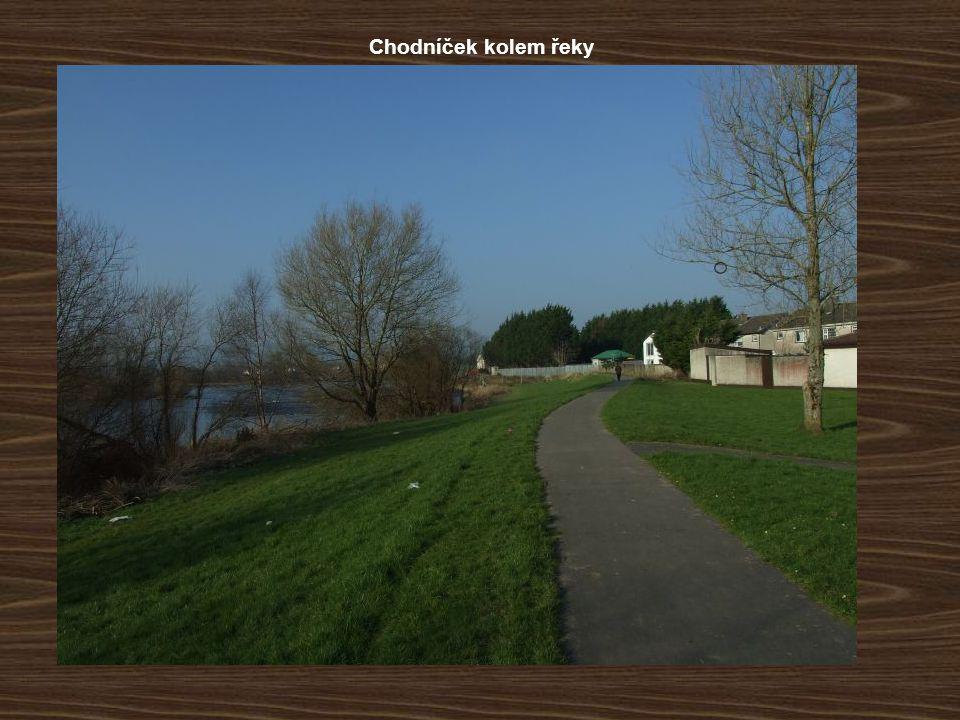 Chodníček kolem řeky