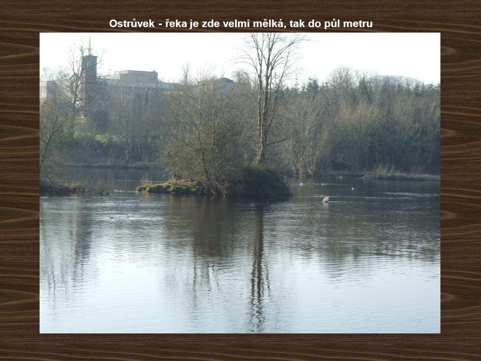 Ostrůvek - řeka je zde velmi mělká, tak do půl metru