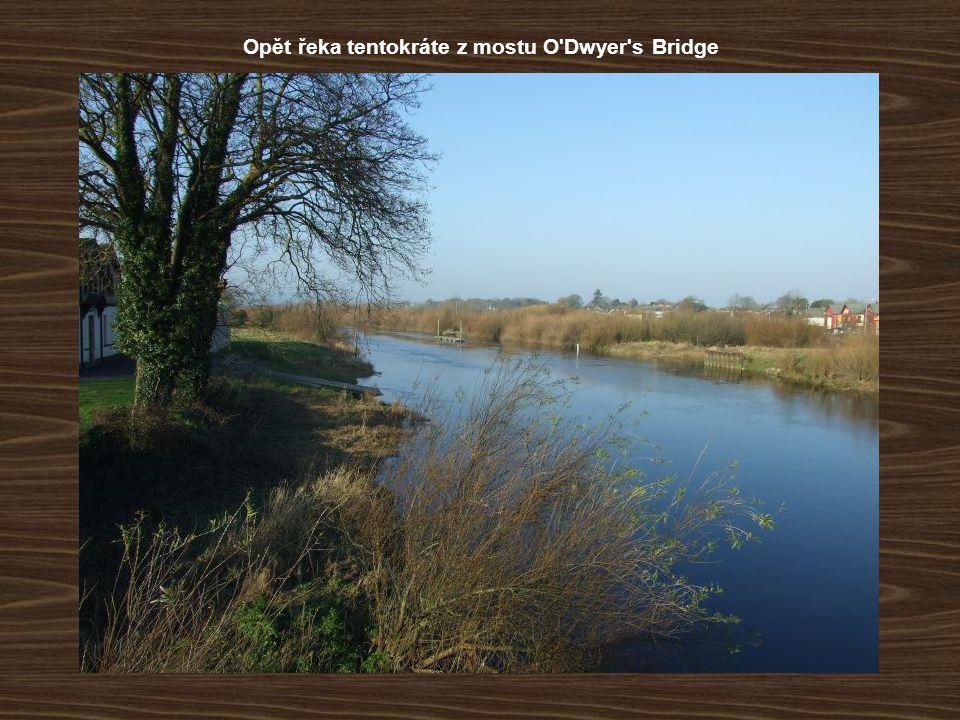 Opět řeka tentokráte z mostu O Dwyer s Bridge