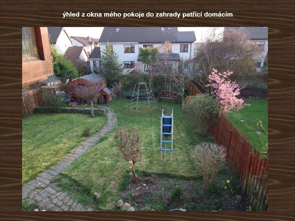 ýhled z okna mého pokoje do zahrady patřící domácím