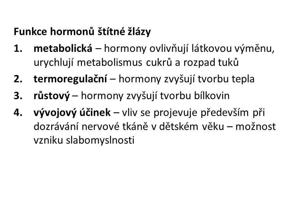 Funkce hormonů štítné žlázy