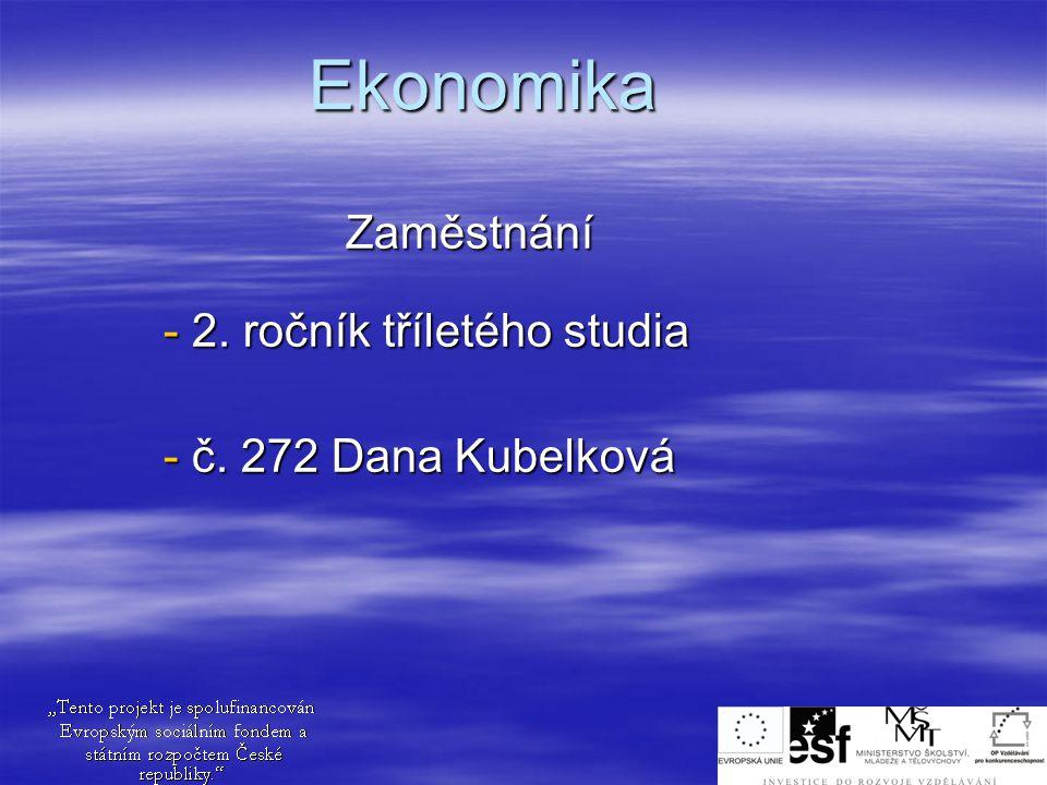 Zaměstnání 2. ročník tříletého studia č. 272 Dana Kubelková