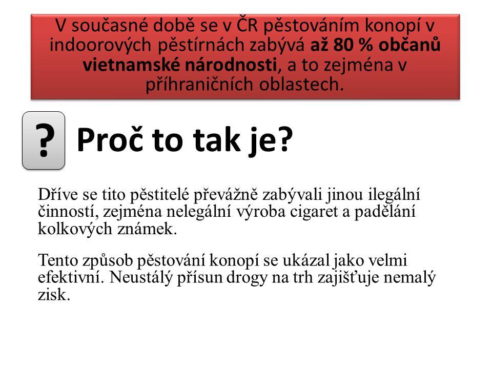 V současné době se v ČR pěstováním konopí v indoorových pěstírnách zabývá až 80 % občanů vietnamské národnosti, a to zejména v příhraničních oblastech.