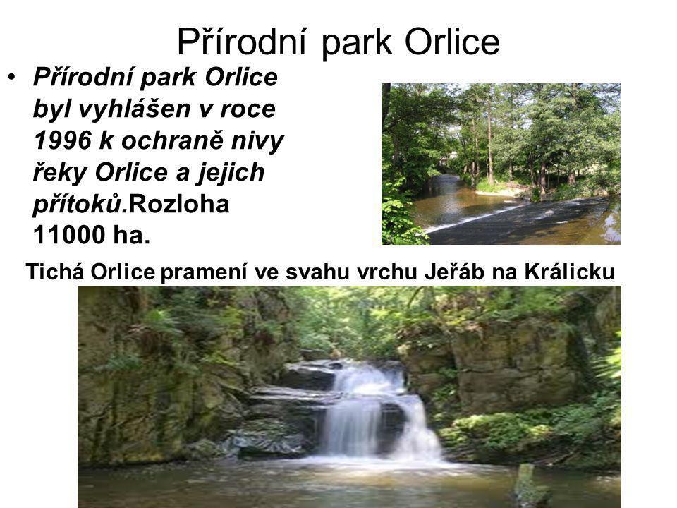 Přírodní park Orlice Přírodní park Orlice byl vyhlášen v roce 1996 k ochraně nivy řeky Orlice a jejich přítoků.Rozloha 11000 ha.