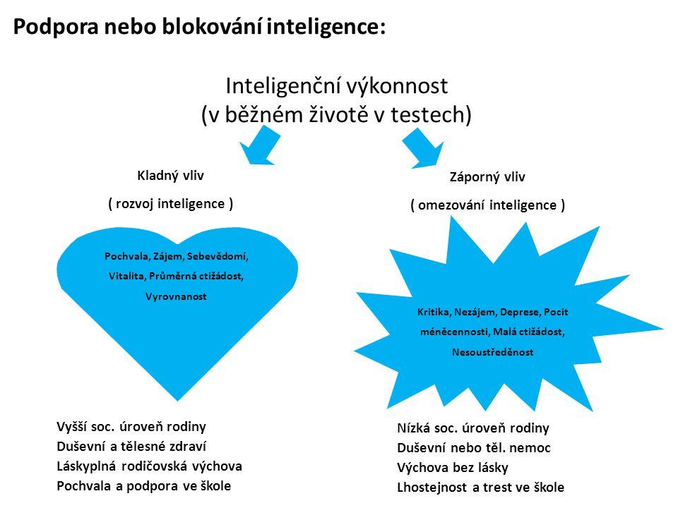 Podpora nebo blokování inteligence: Inteligenční výkonnost (v běžném životě v testech)